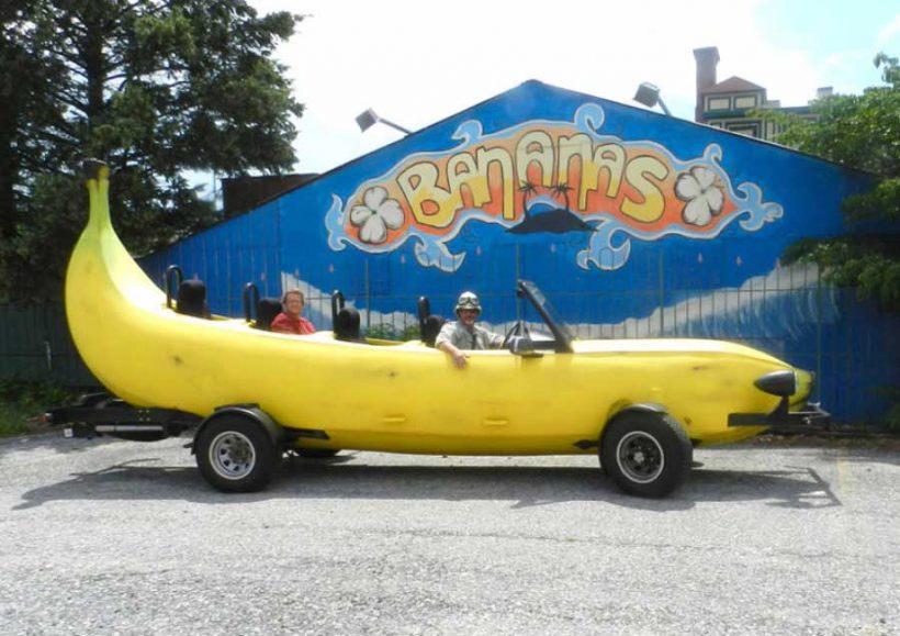 Bananas, automobili e priorità sbagliate per la sicurezza