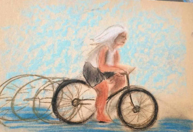 """Una """"Mila"""" vagante da Gemona a Lampedusa"""