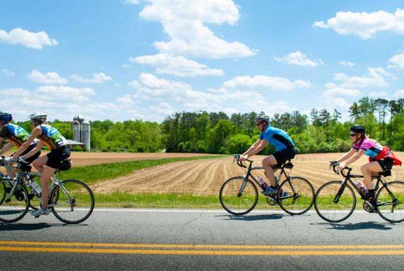 Dove va il cicloturismo? Il questionario online di FIAB e Università dell'Insubria