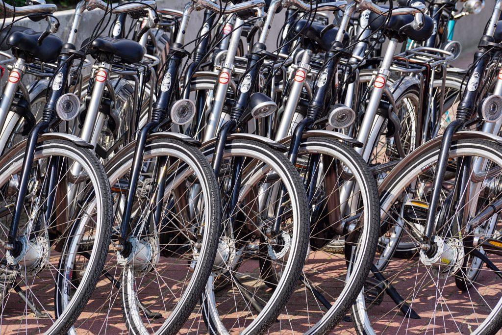 Esperto Promotore Mobilità Ciclistica